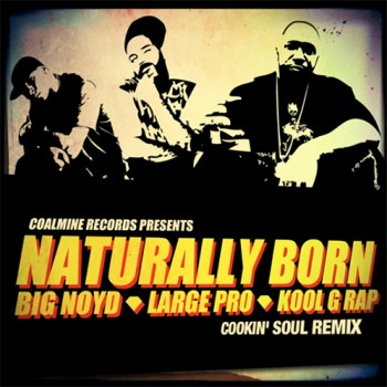 cookin-soul-naturaly-born