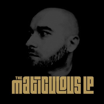 maticulousLP_cover