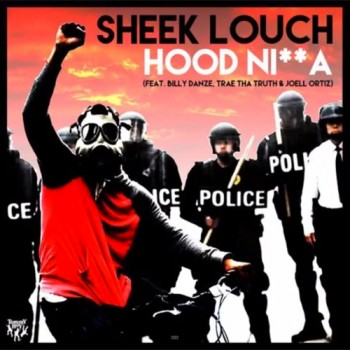 sheek-louch-hood-cover