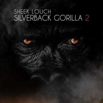 sheek-louch-silverback-gorilla-2