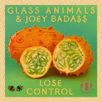 glass-animals-joey-lose-control