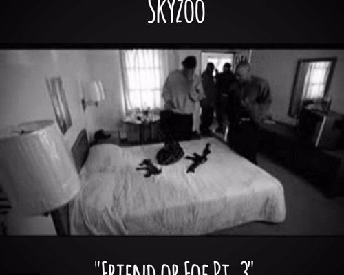 skyzoo-friend-foe
