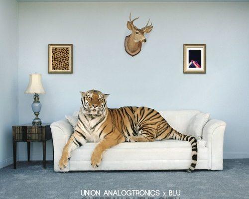 artworks-000182026663-k01xjz-t500x500