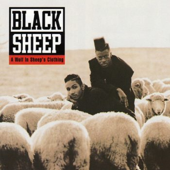 black-sheep-wolf